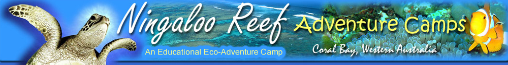 Ningaloo Adventure Camps